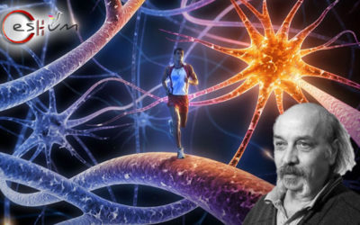 Approche Transpersonnelle de la médecine de l'âme et du corps-esprit