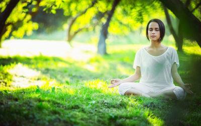 La thérapie évolutionnaire, prospectives et spiritualités