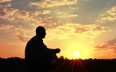 Psycho-évolutionnaire : Life-span