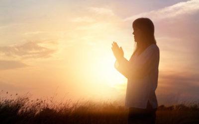 Psychothérapies et spiritualité